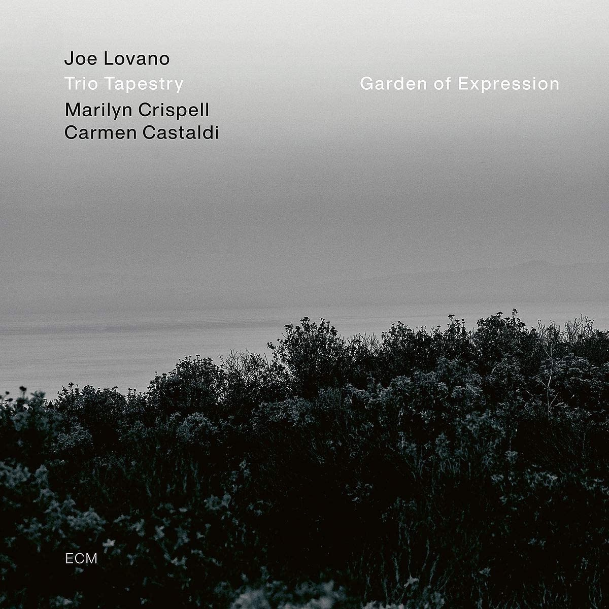 Joe Lovano, Trio Tapestry - Garden Of Expression / Джо Ловано, Trio Tapestry - Garden Of Expression